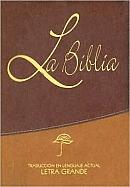 Imagen Biblia Lenguaje Actual Chica Dos Tonos